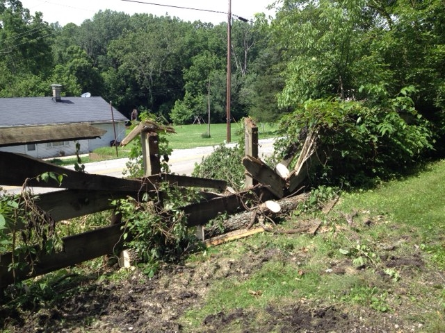 2019.06 tree down on fence N of Corwin